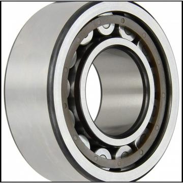 INA Cylindrical Roller Bearings