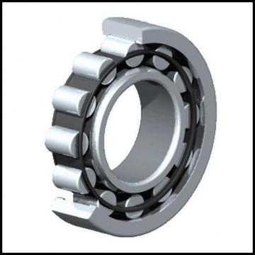 NACHI Cylindrical Roller Bearings