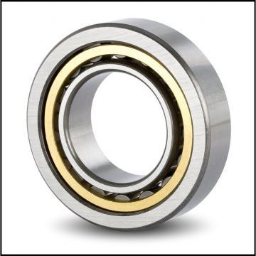 SKF Cylindrical Roller Bearings