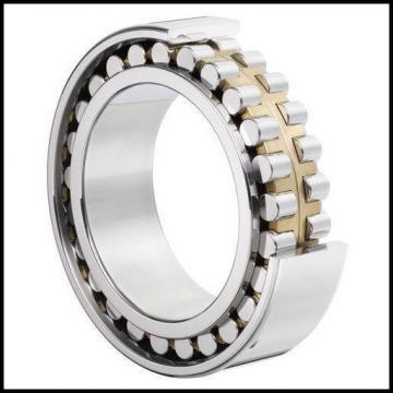 FAG BEARING Cylindrical Roller Bearings